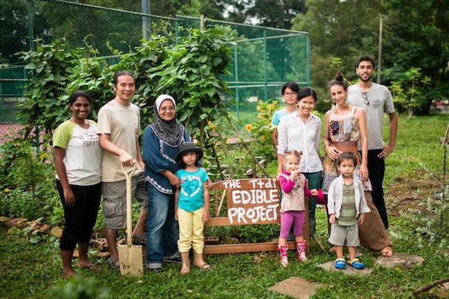 TTDI Edible Gardens