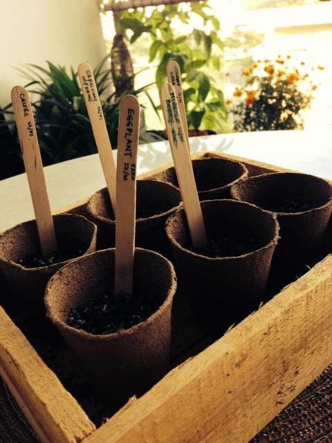 cultivatecentral